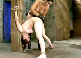 Bonded Iona Grace gets spanked and toyed by Isis Love